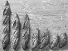 6-stokbrood
